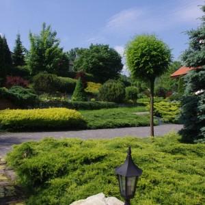 inwentaryzacja ogrodu