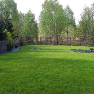 trawnik BioArt